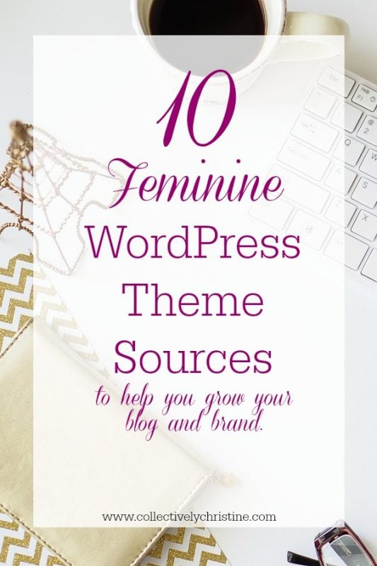 feminine wordpress theme cover