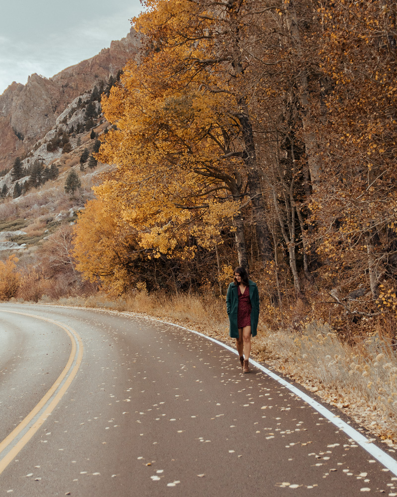 Mammoth Lakes: Where to see the  Fall Colors.