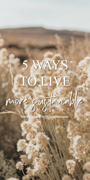 5 WAYS TO LIVE MORE SUSTAINABLE